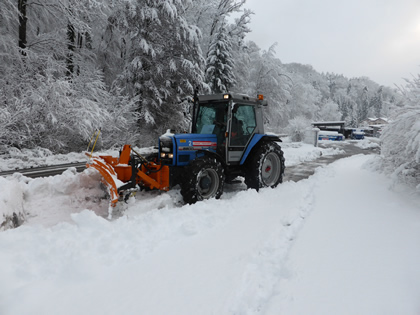 Fz.Nr. 2 Traktor Landini