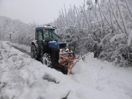 Fz.Nr. 1 Traktor Landini